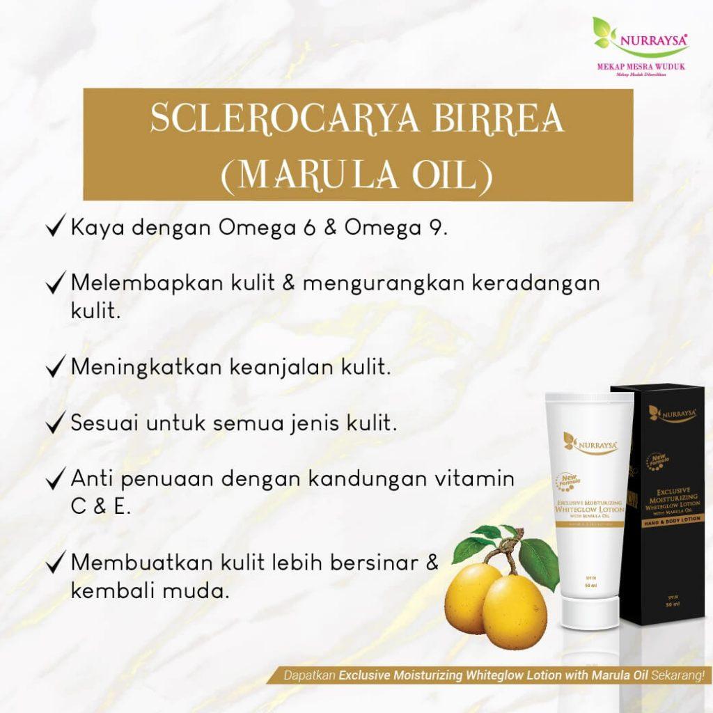 nurraysa-lotion (5)